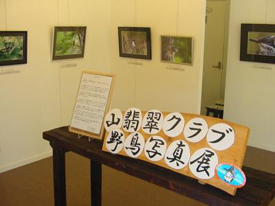 Yamasemi2